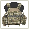 Warrior Assault Systems DCS Plate Carrier DA 5.56mm