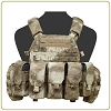 Warrior Assault Systems DCS Plate Carrier M4